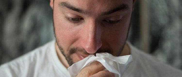 Thuja Wellness Immune System